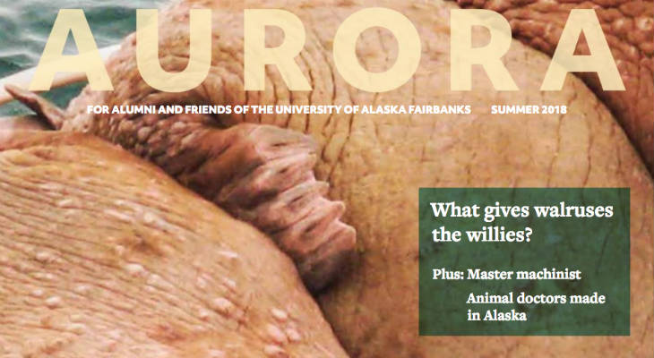 Aurora Magazine screenshot