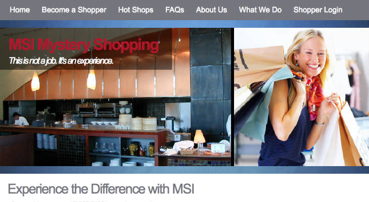 MSI Mystery Shopping screenshot